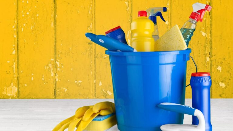 Read more about the article How to Professionally Clean a Home